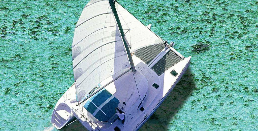 Ou d'une sortie en mer en harmonie avec la nature