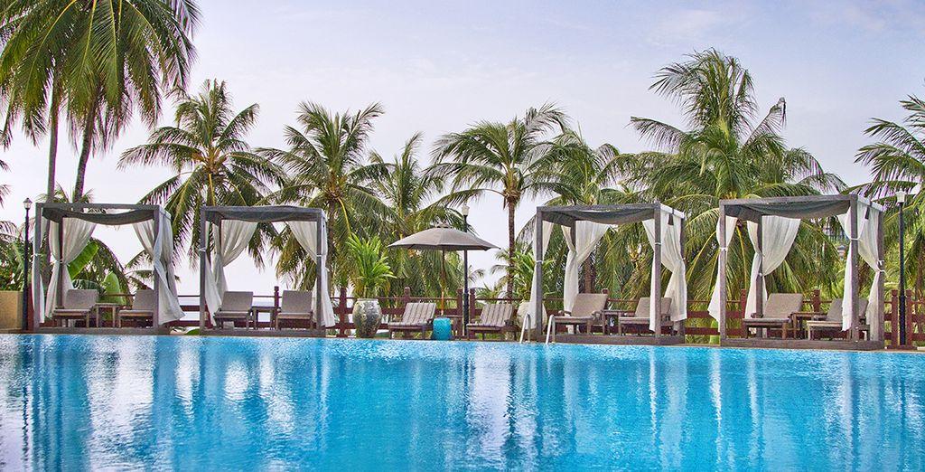 Lézardez sur les chaises longues au bord de la piscine...