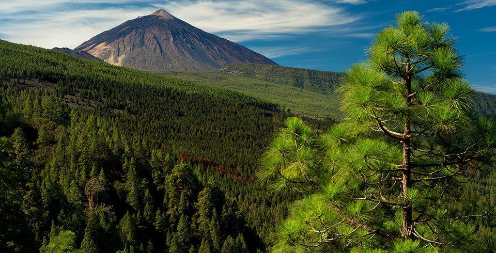 Et ses superbes reliefs volcaniques. Bon séjour sur l'île de Tenerife !