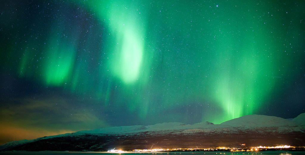 Partez à la rencontre des voiles multicolores de la nuit