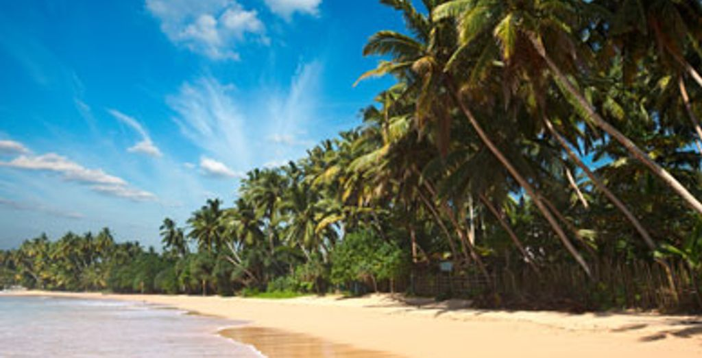 - Circuit privatif au Sri Lanka et séjour balnéaire - 9 nuits en 3* & 4* - Colombo - Sri Lanka Colombo