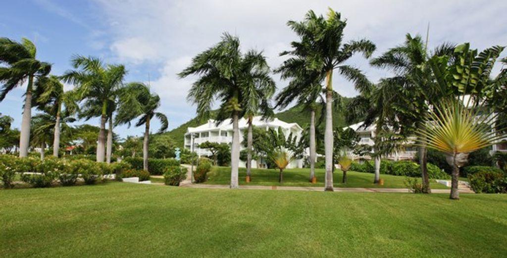 Appréciez le vaste jardin luxuriant