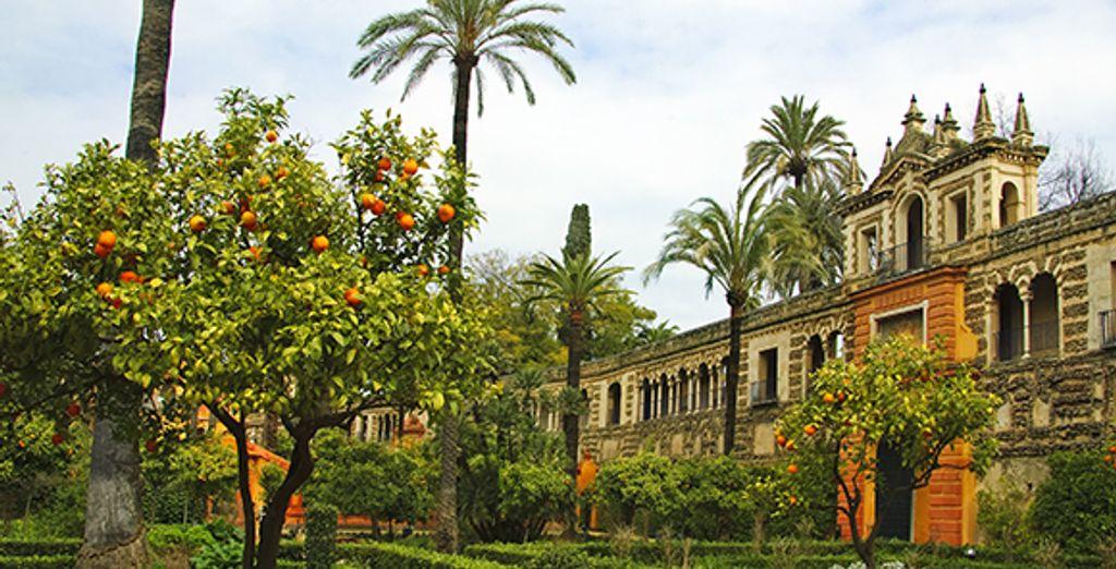 Visitez Séville et ses merveilles