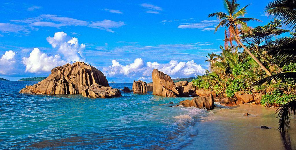 Aux plages de la Digue ou de la Baie Sainte Anne