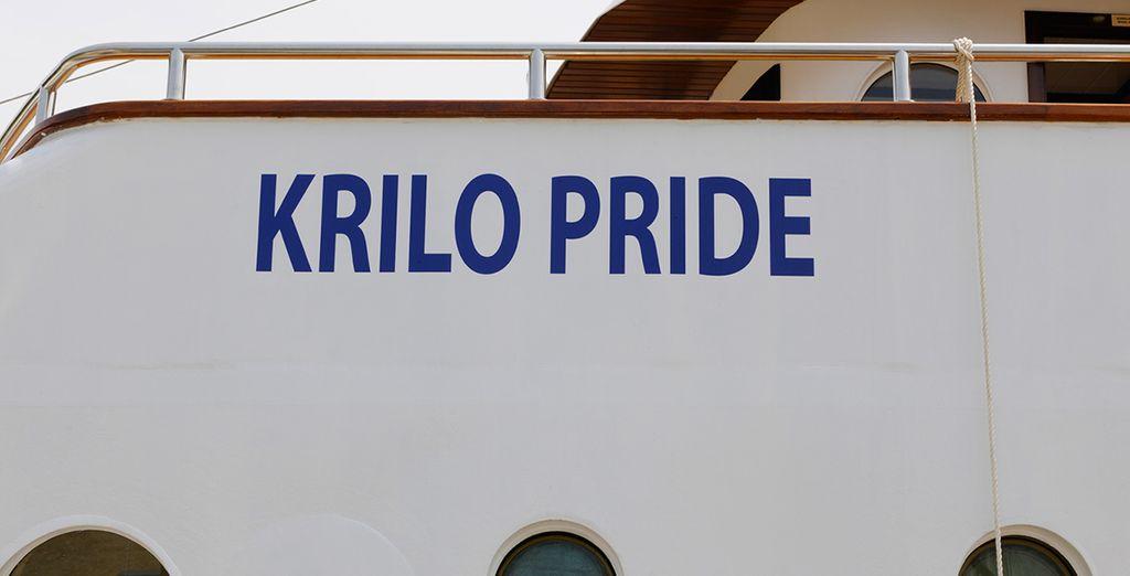 À Hvar, un jetsetteur vous demande quel est votre yacht... Vous pouvez lui répondre fièrement : Le Krilo Pride !