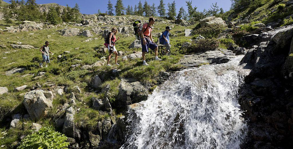 Durant l'été, profitez d'un nature exceptionnelle...