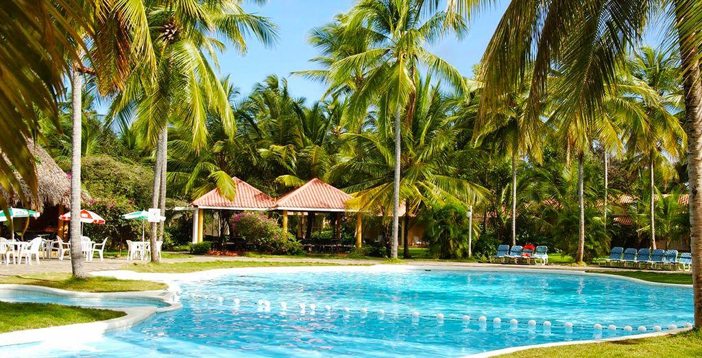 Vous rêvez de vacances dans un cadre idyllique ?