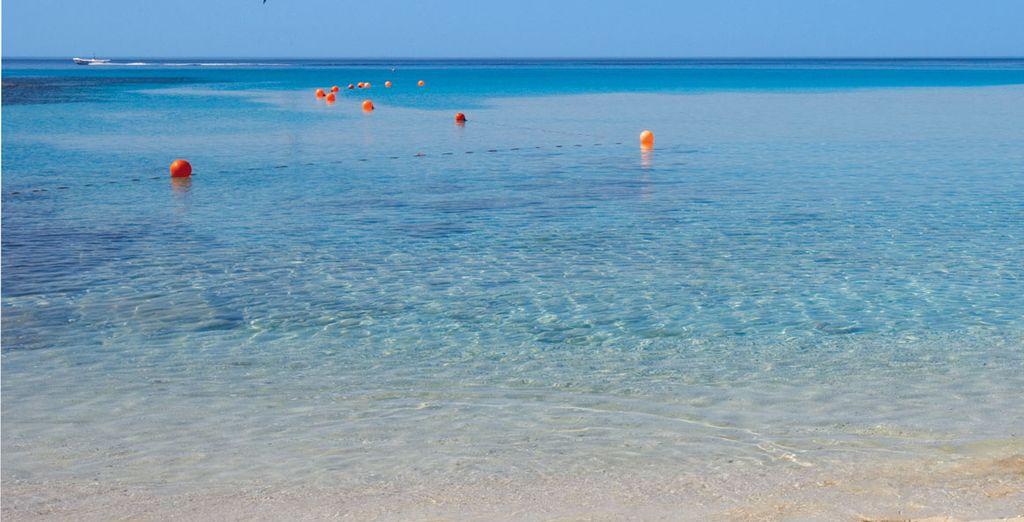 Bonnes vacances au Nord au Chypre...