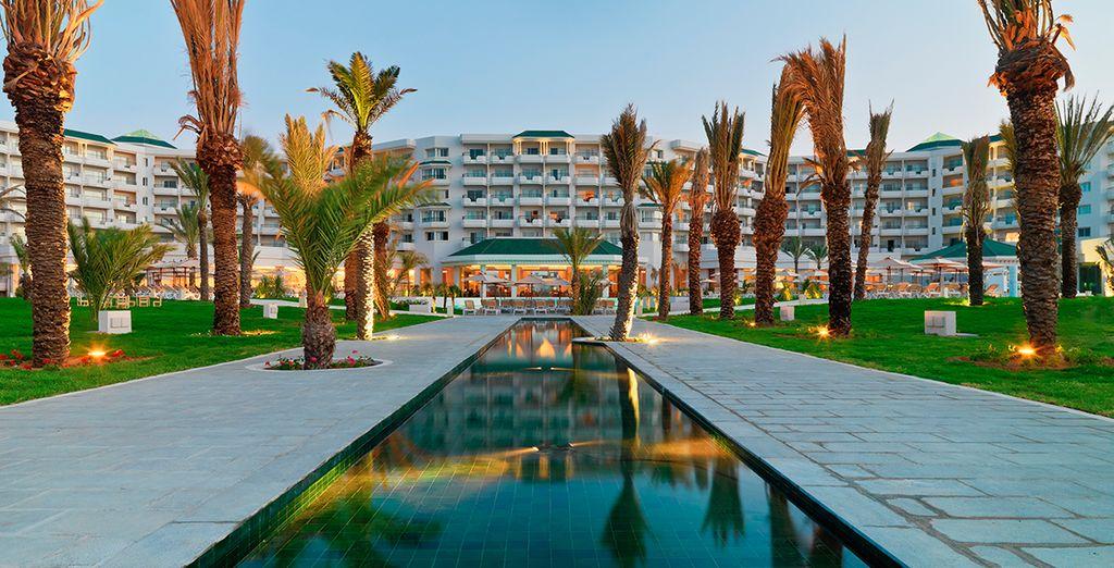 Excellent séjour en Tunisie !