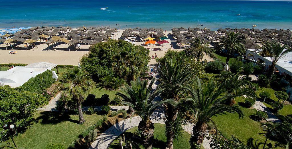Profitez d'un resort en bord de plage