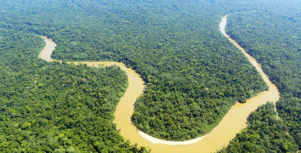 les plaines amazoniennes...