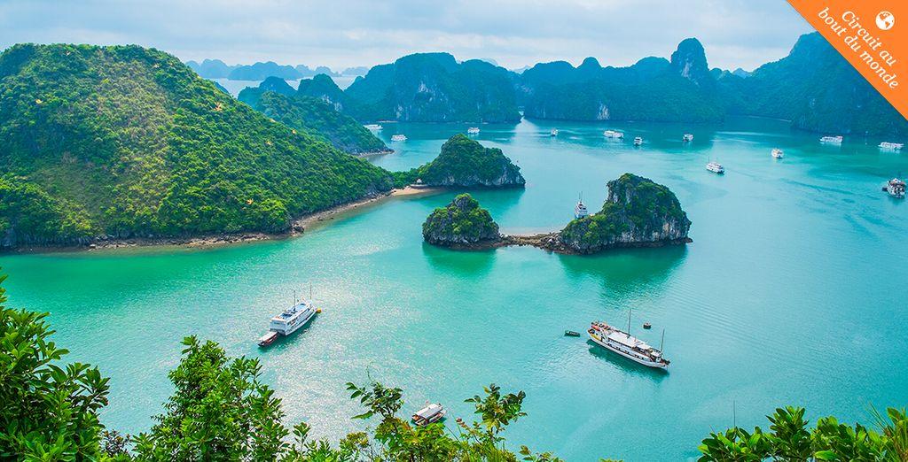 Venez vivre une expérience unique au Vietnam...