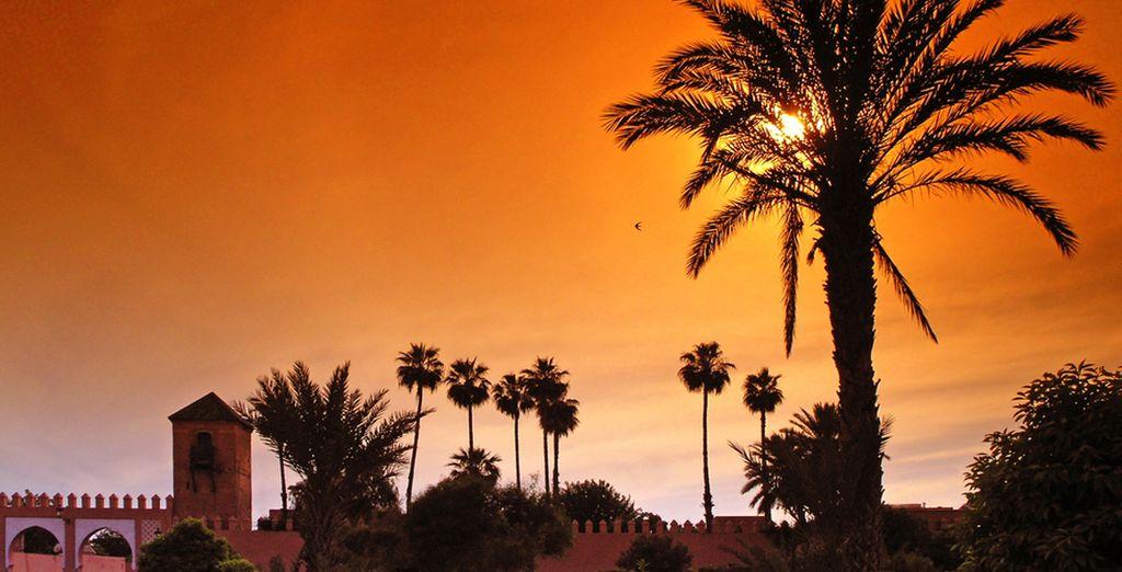 Laissez-vous enivrer par la beauté de Marrakech