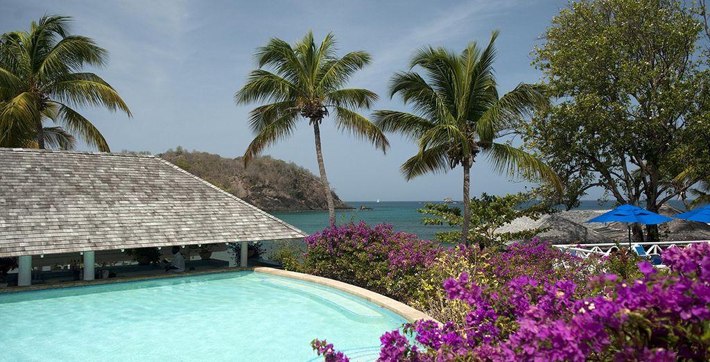 Promenez-vous dans son sublime jardin tropical