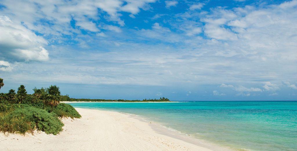 Direction une baie privée près de Playa del Carmen sur la Riviera Maya !