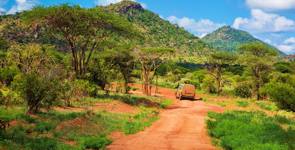 Profitez de notre offre avec 1 nuit en Safari
