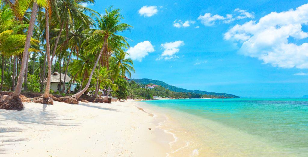 Sur l'île de Koh Samui...