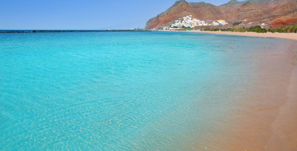 Et fonds marins préservés... bon séjour à Tenerife !