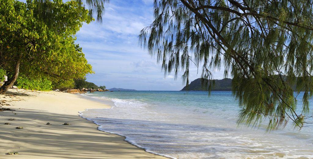 Plage de sable fin et eaux turquoise aux Seychelles