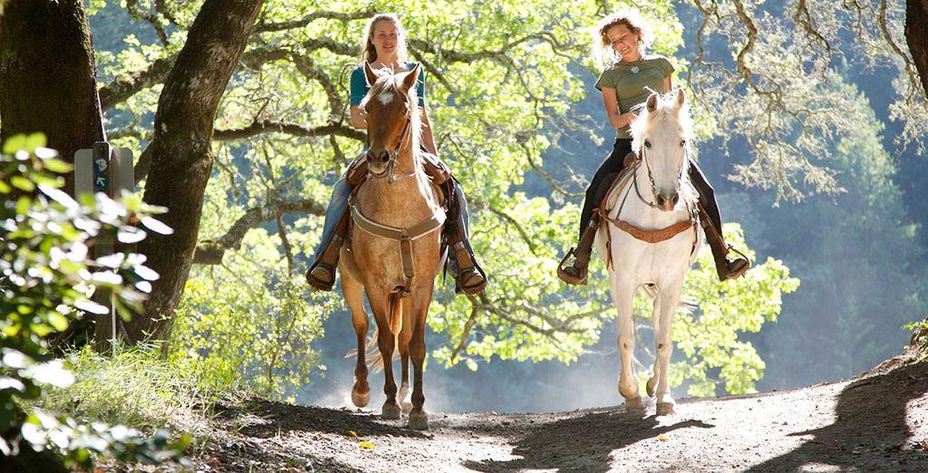 Balade à cheval au Center Parcs Domaine des Bois-Francs