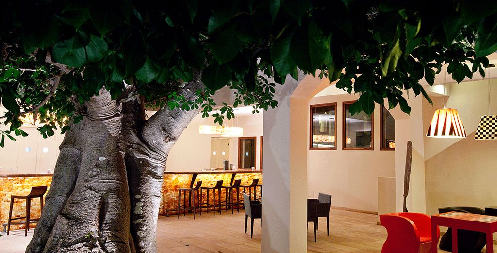 Où les baobabs remplacent les cocotiers