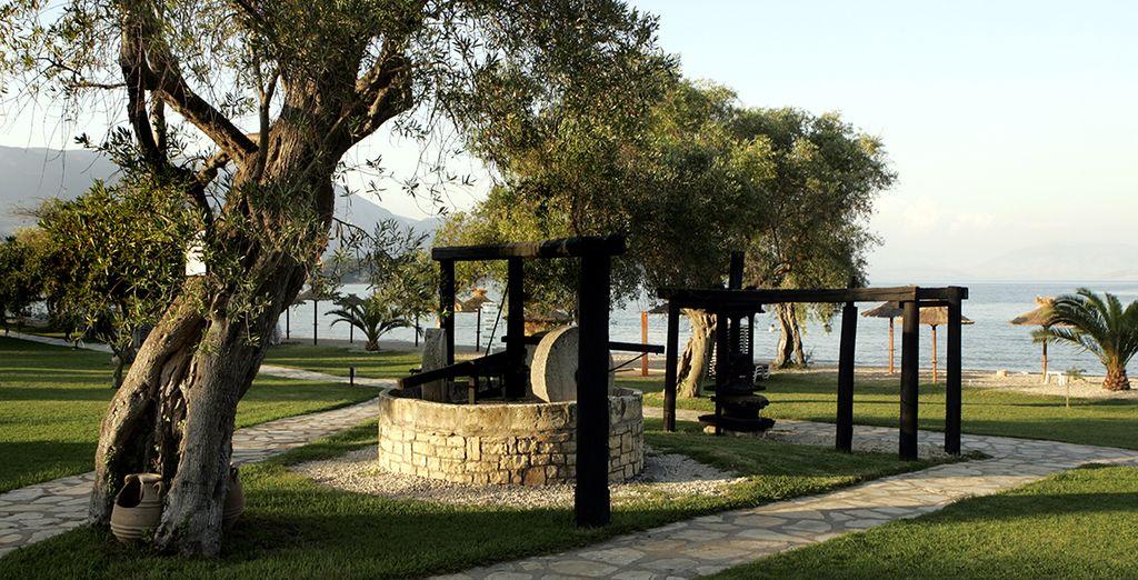 Un séjour idyllique vous attend dans les îles grecques