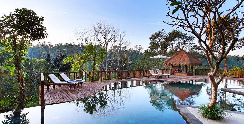 Où le Nandini Jungle vous réserve quelques jours hors du temps