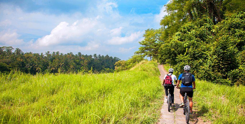 Qui vous offrira la possibilité de découvrir la beauté de la région d'Ubud