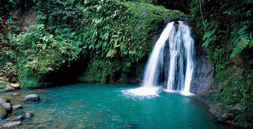 Découvrez les îles de Guadeloupe