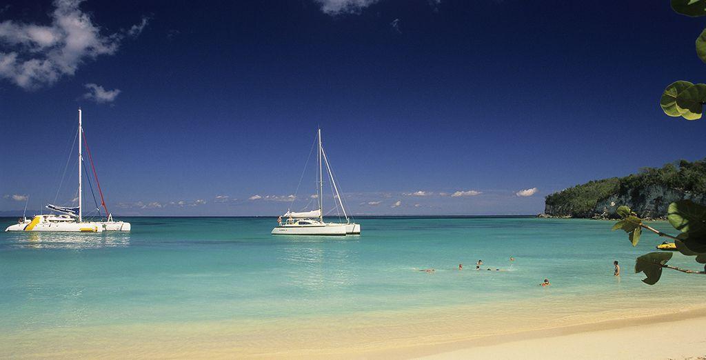 Excursion en bateau au cœur des îles Antillaises