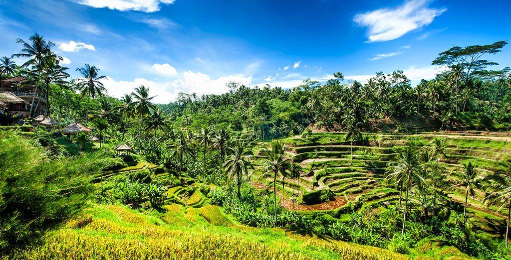Découvrez Bali avec les séjours tout compris Voyage Privé