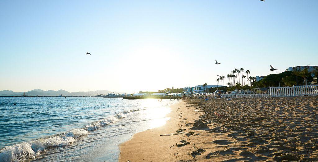 Passez un agréable séjour sous le soleil cannois