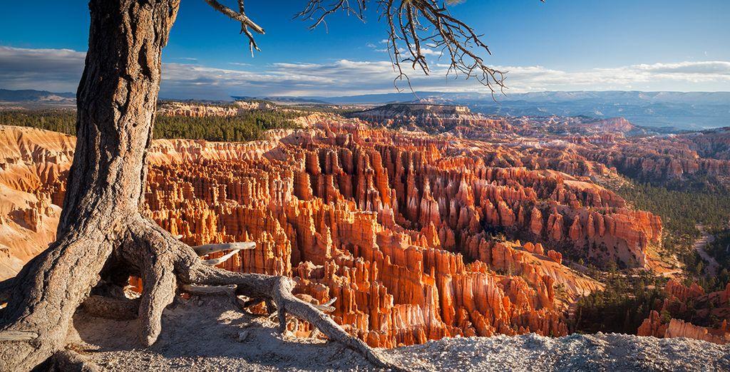 Laissez-vous envoûter par la beauté des canyons...