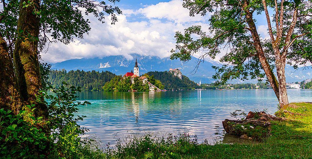 Envie d'une escapade inédite en Slovénie ?