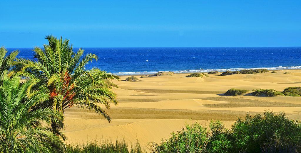 Venez découvrir les paysages sublimes de cette île