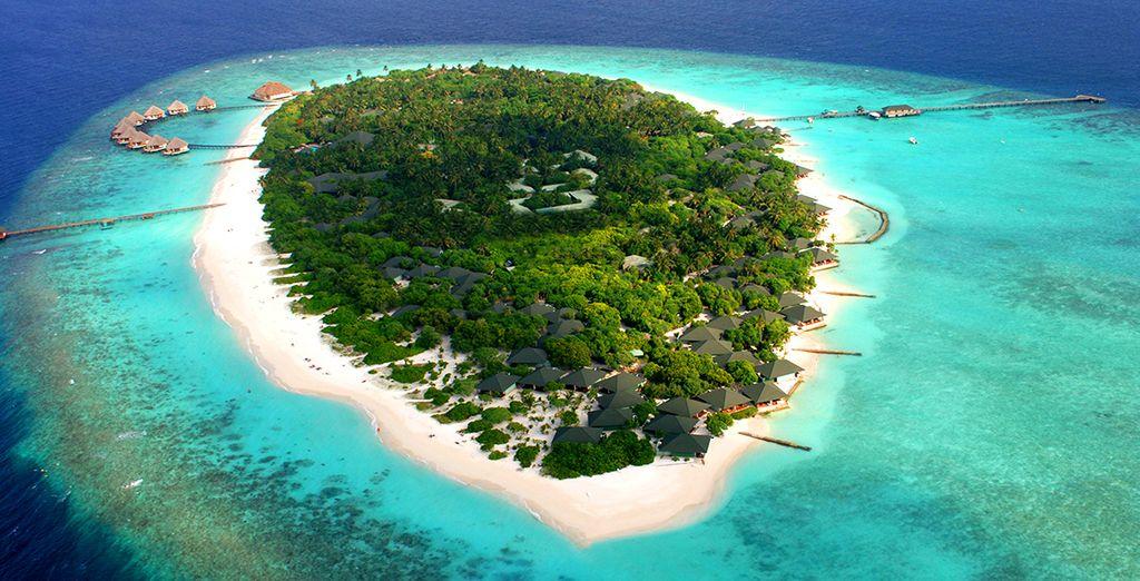 Envolez-vous vers l'île de Meedhupparu dans l'atoll Raa
