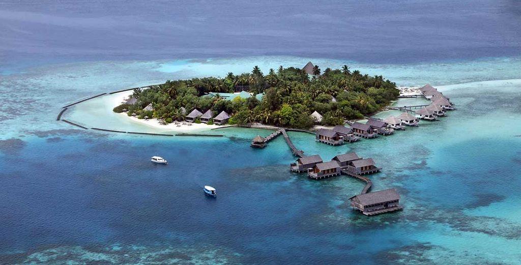 Où vous accueille le Gangehi Island Resort 5*