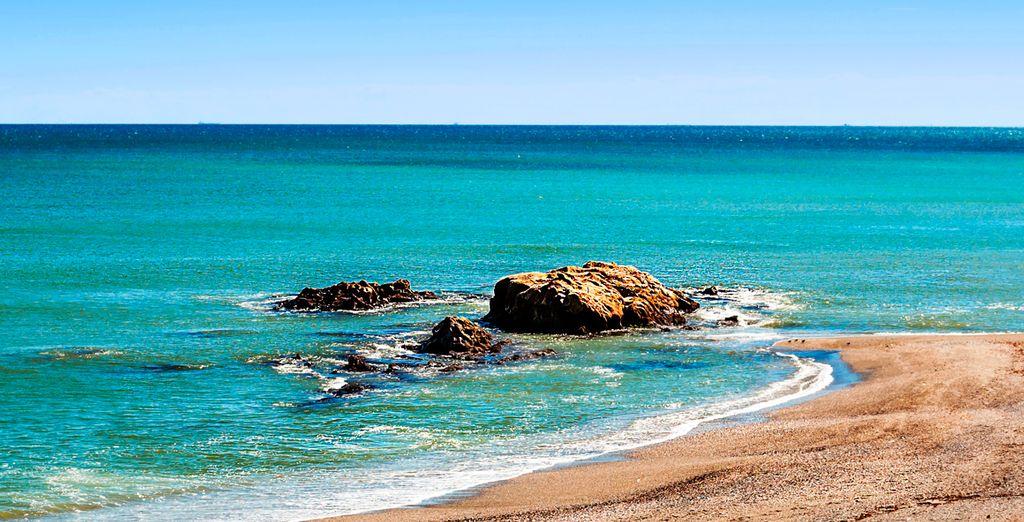 Lézardez sur les plages andalouses...
