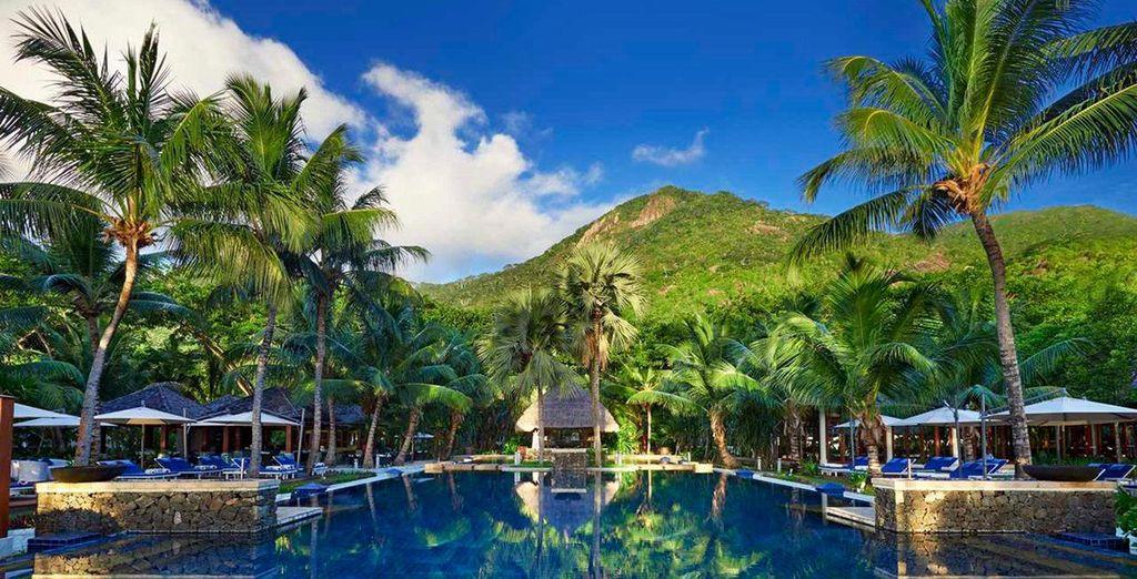 Confortablement installé dans votre transat au bord de la piscine, profitez de ce cadre exceptionnel...