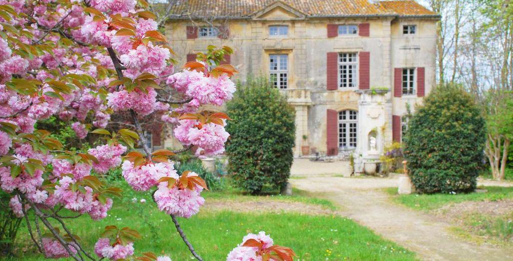 Bienvenue au Château de Roussan - Château de Roussan 4* Saint Rémy de Provence