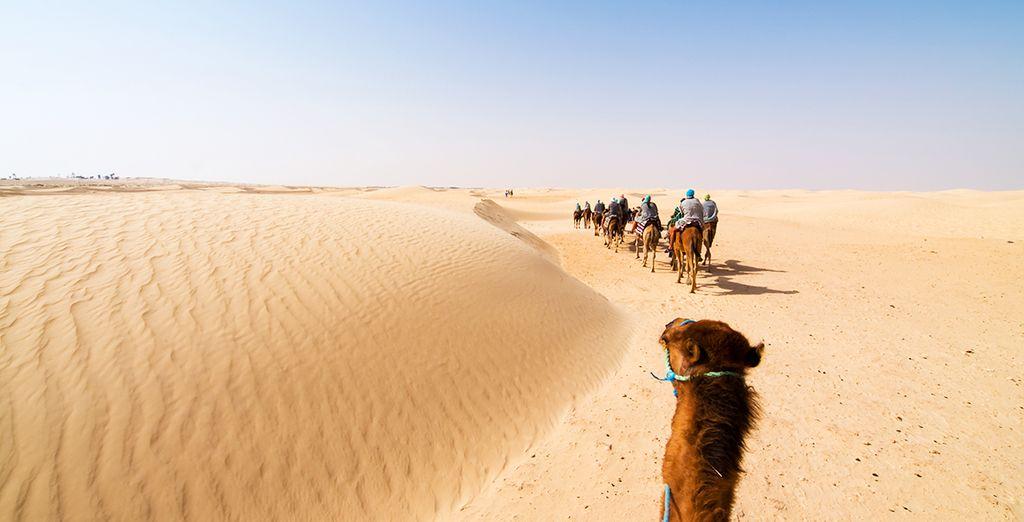 Par votre escapade dans le sud tunisien