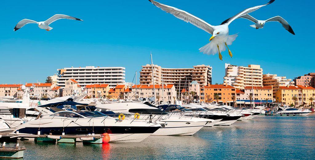 Promenez-vous sur la marina de Vilamoura