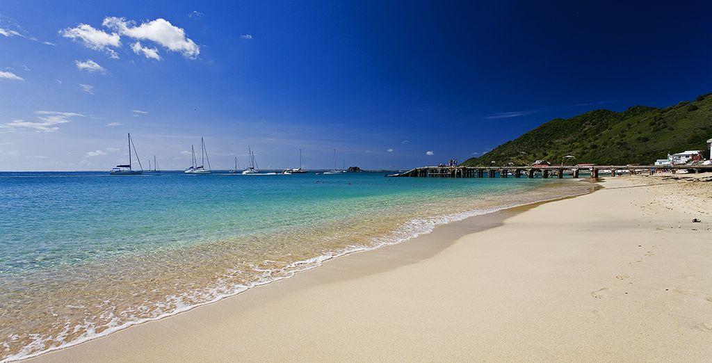 Près des sublimes plages des Antilles