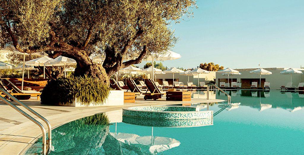 Plongez dans une oasis de luxe & de calme