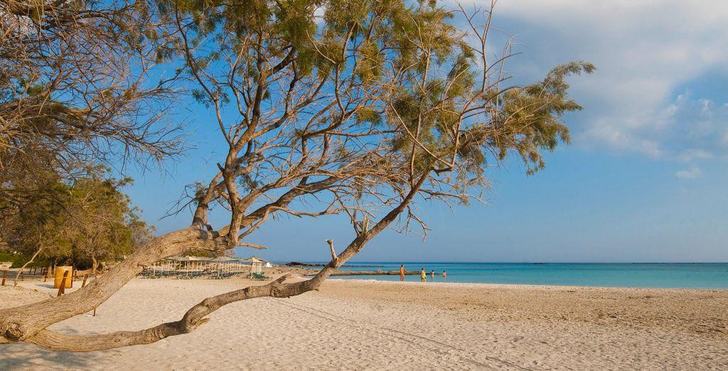 Pour vous détendre, la plage sera votre plus doux refuge, très bon séjour !