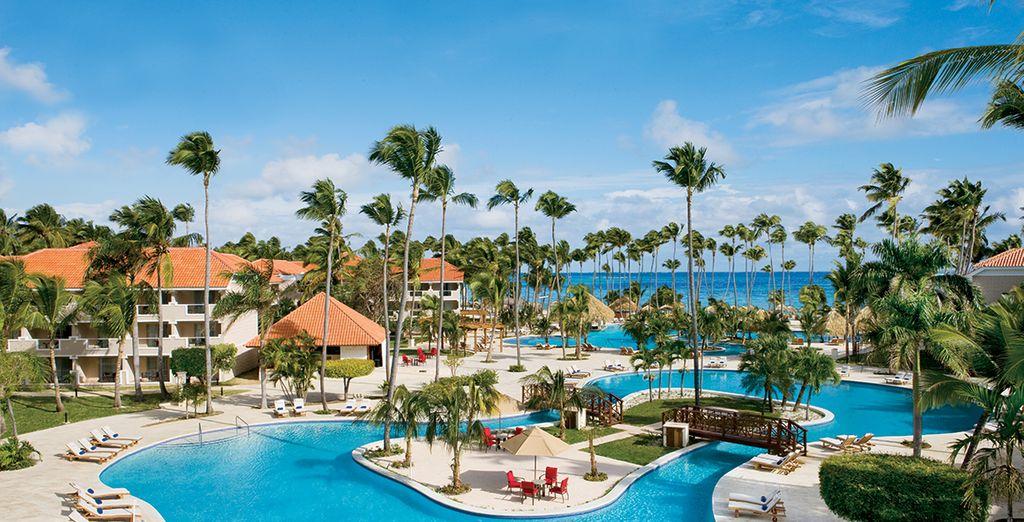 Plongez dans un cadre de rêve - Hôtel Dreams Palm Beach Punta Cana 5* Punta Cana