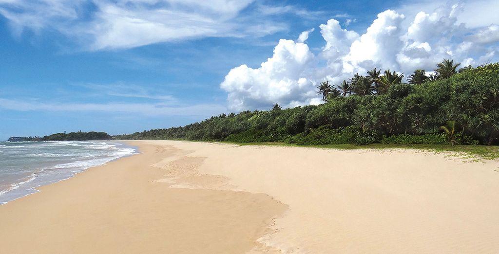 Rendez-vous au bord la plage de Bentota