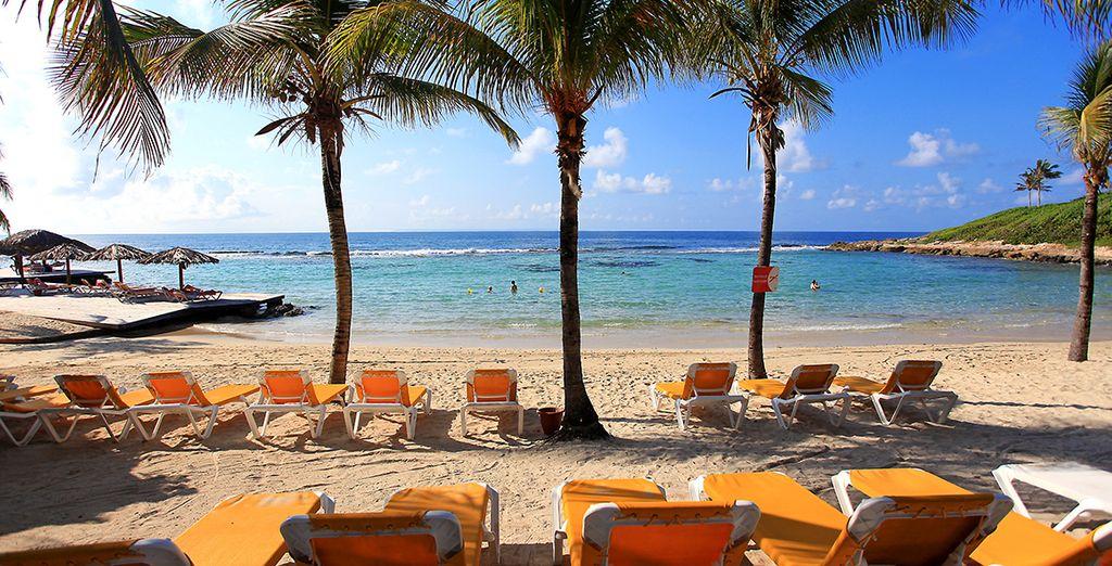 face à la plage, et allongez-vous sur un transat à votre disposition