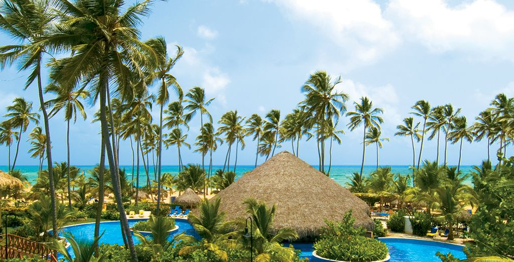 Direction le Dreams Punta Cana... - Hôtel Dreams Punta Cana Resort & Spa 5* Punta Cana