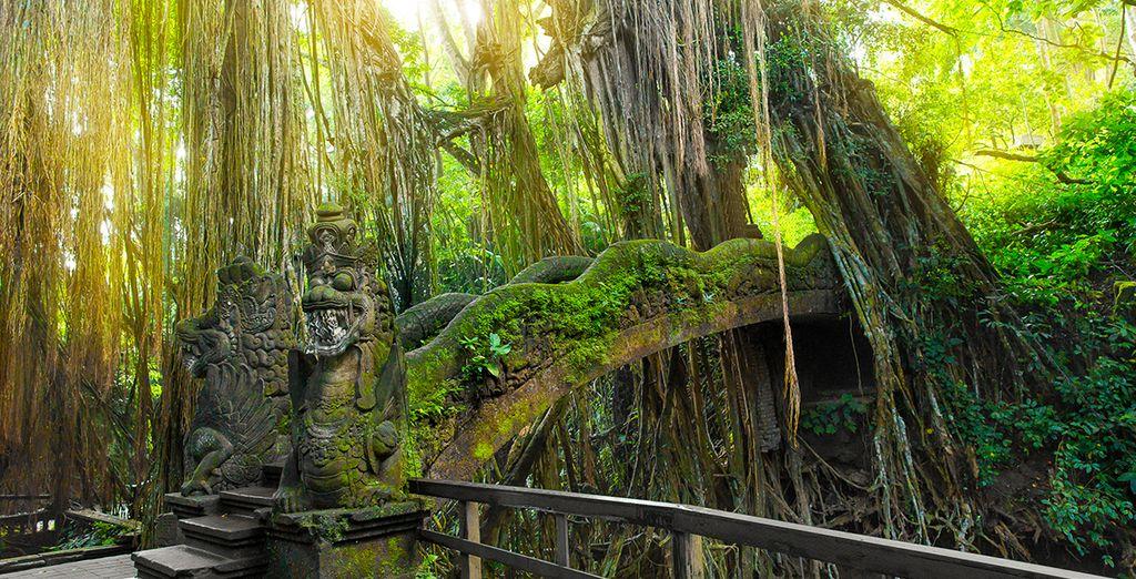 Sans oublier de partir à la découverte du centre culturel de l'île